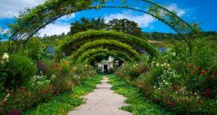 Garden that makes you think about the first steps to sort out your garden after moving